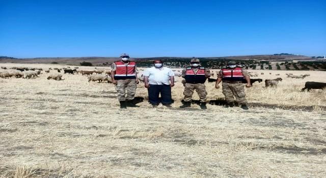 Kayıp çoban ve sürüsü 5 saat sonra bulundu