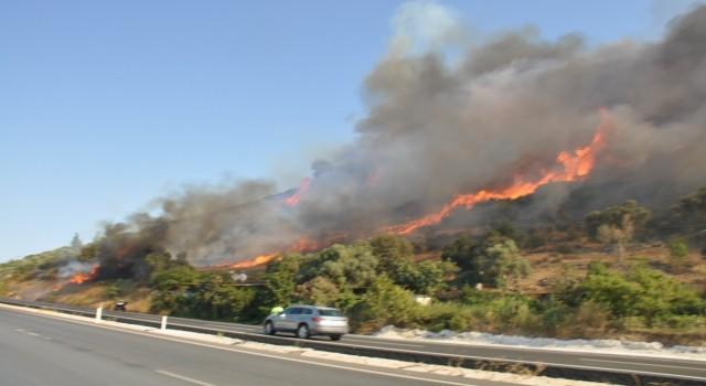 Muğla'da orman yangınları korkutuyor