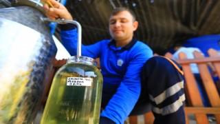 Şifalı bitkiler ekonomiye kazandırılıyor