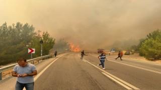 Manavgat-Konya yolu üzerinde orman yangını