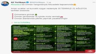 İstanbul'da ormanlara giriş 1 ay boyunca yasaklandı
